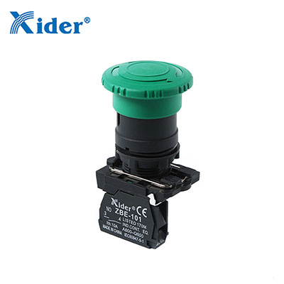 Push Button Switch Manufacturer_Push Button Switch